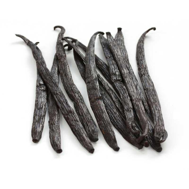 India Planifolia Vanillestokjes